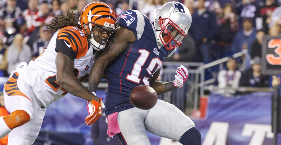 Bengals Sign Brandon LaFell